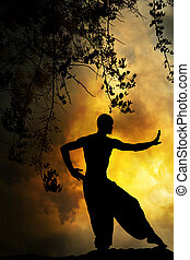martial, spirituel, coucher soleil, arts