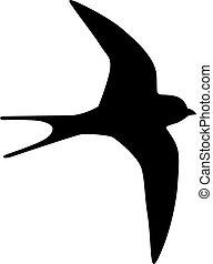 Martin bird silhouette