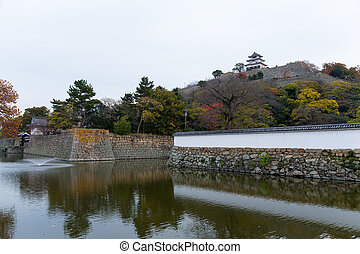 Marugame Castle in Japan at autumn