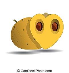 Marula fruit on white background vector