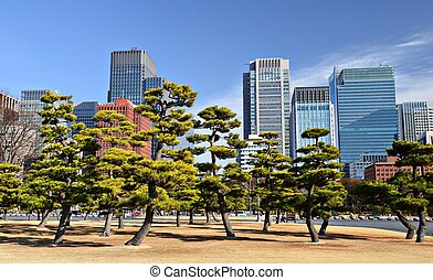 Marunouchi Business District