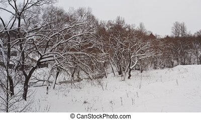 Marvelous winter landscape of frost woods, snowy hills....