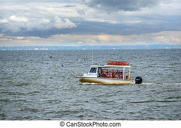 Maryland crab boat fishing on the Chesapeake Bay - Maryland...