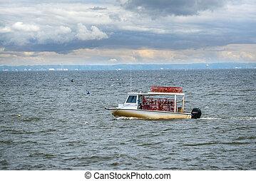 Maryland crab boat fishing on the Chesapeake Bay