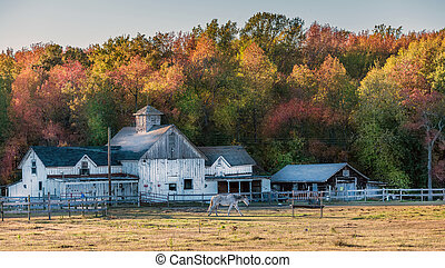 Maryland stable with old rustic barn during Autumn