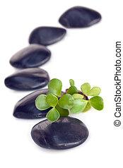 masaje, piedras, con, jade