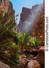 masca, -, canari, célèbre, canyon, tenerife