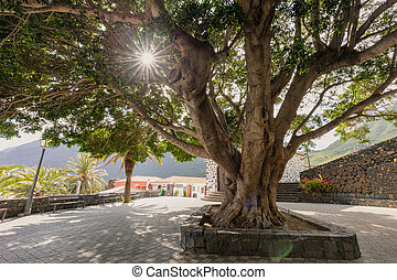 Masca village the most visited tourist attraction of...