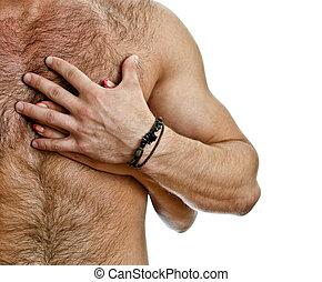 maschio, isolato, chest., uomo, white., mano femmina