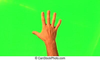 maschio, mano, gesti