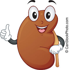Mascot Illustration Featuring a Healthy Kidney Giving a Thumbs Up