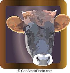 mascota, imagen, marco, vaca