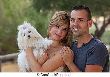 mascota, maltés, perro, familia