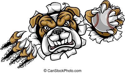 mascotte, baseball, bulldog, sport