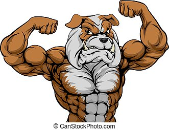 mascotte, bulldog