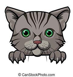 mascotte, cartone animato, disegno, carino, gatto, testa