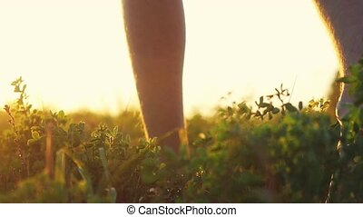 Masculine feet go barefoot to the soft grass through the sun during amazing sunset with lense flare effects in slowmotion. 1920x1080