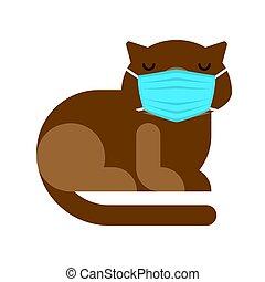 mask., cuarentena, pandemic., coronavirus., gato, médico