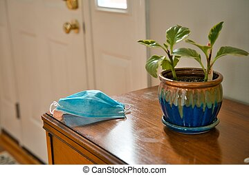 Mask on table looking towards door beside a house plant
