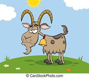 maskotka, meadow., goat, litera, rysunek, zrzędny