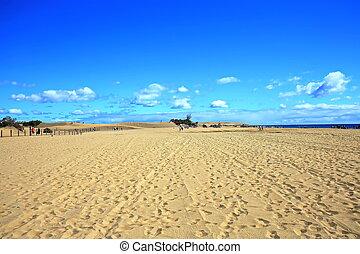 Maspalomas the sand dunes on Gran Canaria