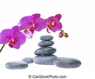Massage. - Massage with hot stones.