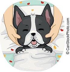 massaggio, terme, cane, illustrazione
