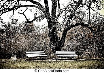 massandra, ベンチ, 2, 庭