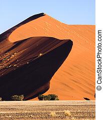 Dune 45 - Massive dune next to Dune 45 at Sossusvlei in...