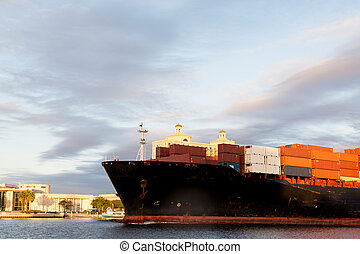 Massive Freighter on Savannah River