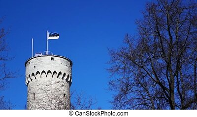Massive old tower and Estonian flag