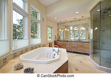 Master bath with large glass shower - Master bath in luxury...