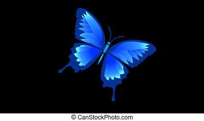 mat, alpha, animé, bleu, isolé, papillon