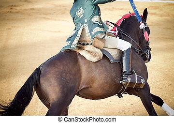 Matador and horseback in bullring