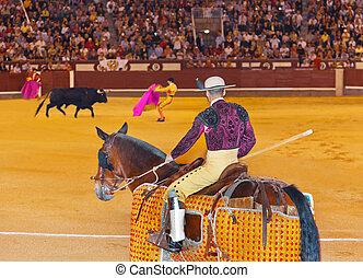 matador, y, toro, en, toreo, en, madrid
