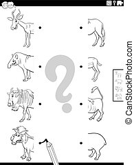 Black and White Cartoon Illustration of Educational Task of Matching Halves of Pictures with Wild Animal Characters Coloring Book Page