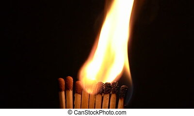 Match Sticks Catching Flame - Nine Stick Slow Motion.