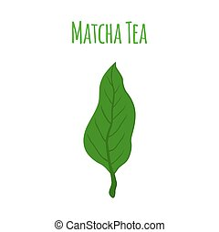 Matcha tea leaf - japanese drink, natural organic plant. Flat style