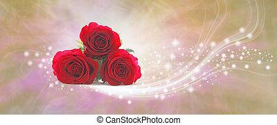 matczyny, iskrzasty, róże, niespodzianka, chorągiew, dzień, czerwony