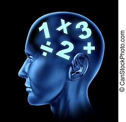 matemáticas, cerebro