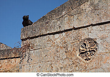 Matera, Basilicata, Italy: ancient wall with a black cat in...