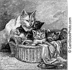 Maternity, Cat kittens Engraving - Line Engraving, Created...