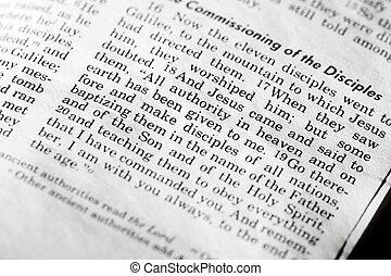Mathew 28:18, a popular verse in the New Testament