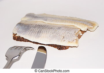 matie, a young herring on a slice bread