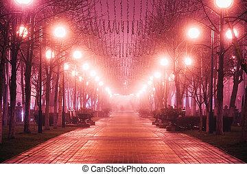 matin, beau, ville, nuit, avenue, brouillard, rue