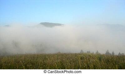 matin, mouvements, carpathians., montagnes, dissipates, brouillard