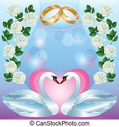 matrimonio, augurio, invito, cigni, o, scheda