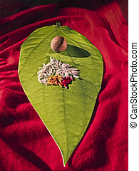 Matrimony card in shape of Betel Leaf, Piper betle with Areca nut, Rice, Kumkum & Turmeric