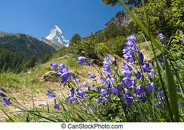 matterhorn, -, alpi svizzere