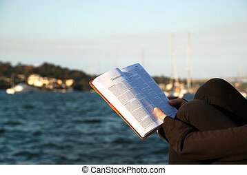 matthew, bible, -, livre, lecture